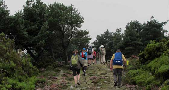 Self-Guided Walking Holidays on the Camino de Santiago 2