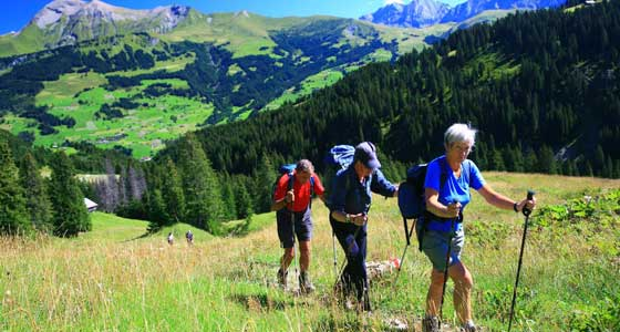 The Alpine Pass Route | Guided Walking Holidays in Switzerland