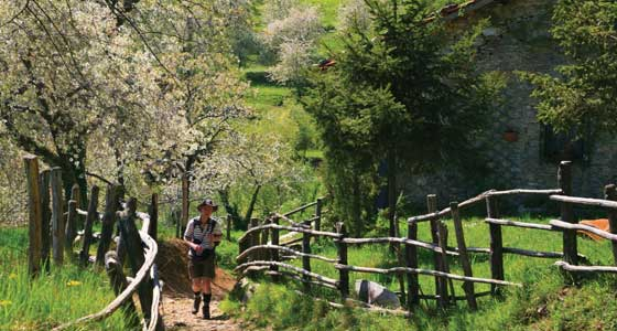 Self-Guided Walking Holidays in Italy's Apuane Alps