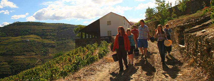 douro valley walking holidays - sherpa expeditions