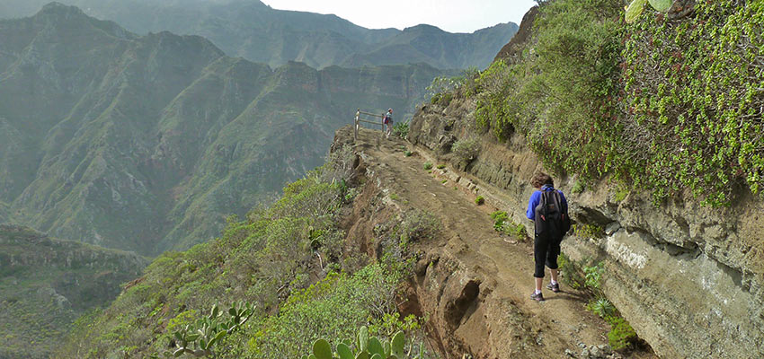 Walking in Tenerife with Sherpa Expeditions