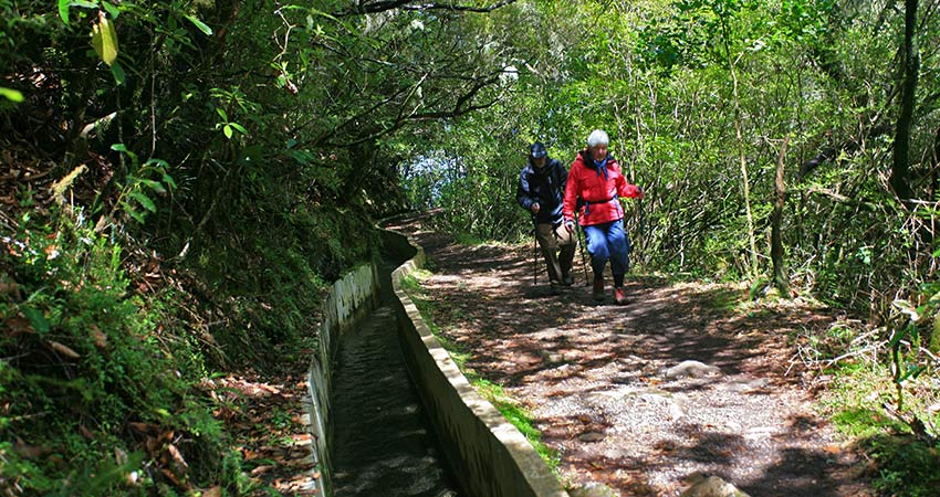 Madeira walking holidays with Sherpa Expeditions