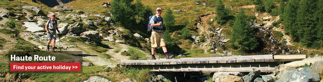 Walking Holidays on the Haute Route 8