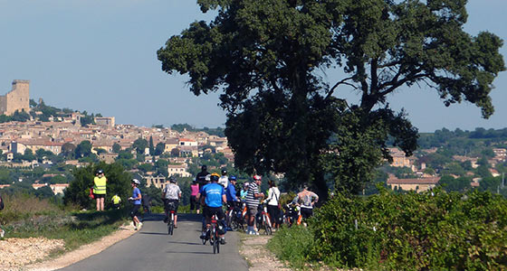Provence Bike & Boat Guided Cycling Holiday in France