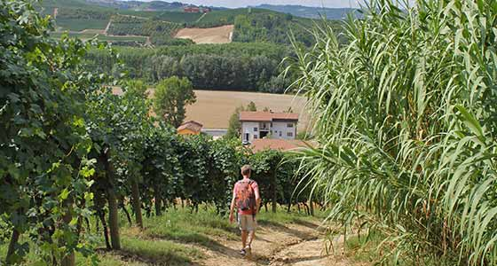 Self-Guided Walking Holidays in Piedmont, Italy